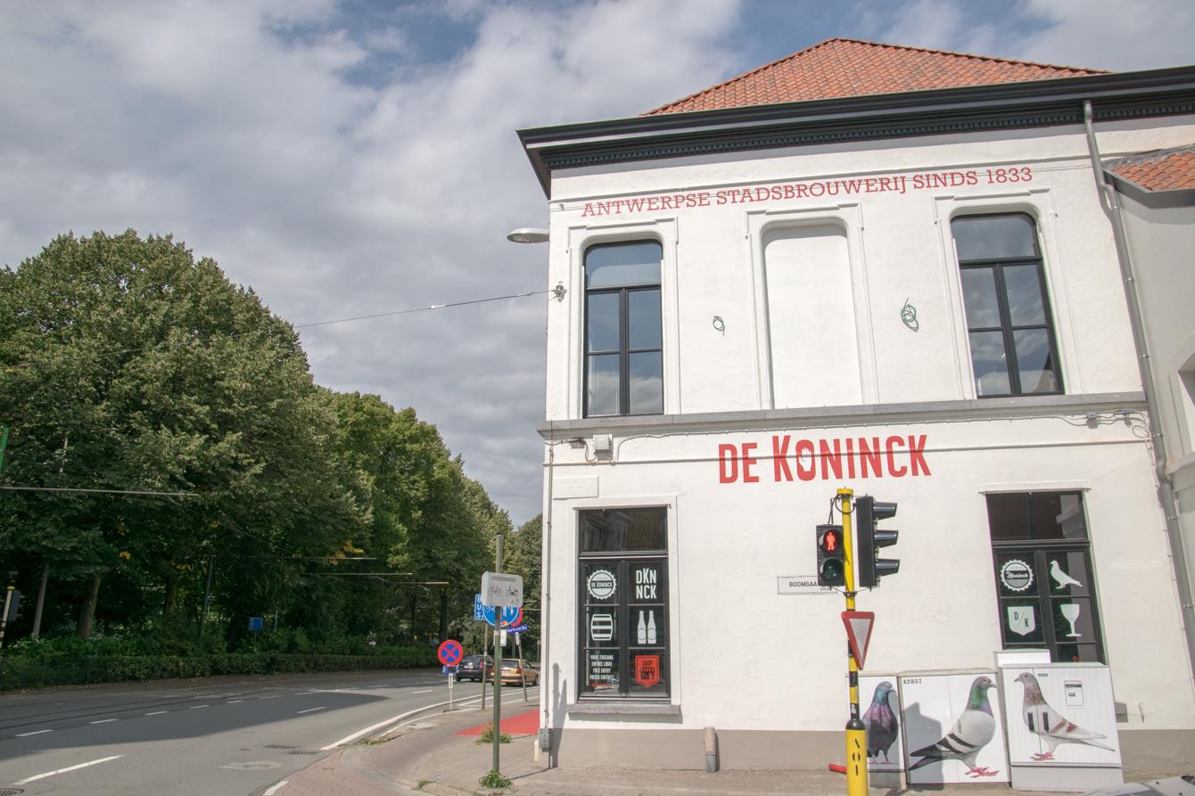 dekonick-6